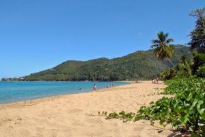 Une des plus belles plages de la Basse-Terre (Guadeloupe). Longue de plus de 1 kilomètre, la plage est bordée de cocotiers et de raisiniers.